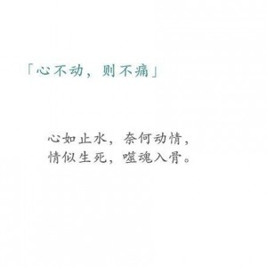 muxing.cc162695221022187