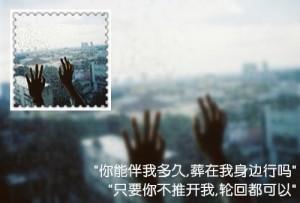 muxing.cc7641131021332